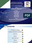 Diapositiva Proyecto Mercosur
