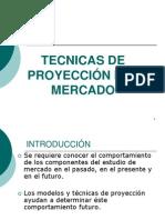 1.9 Tecnicas de Proyeccion