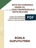 Elemente de Chirurgia Mainii (II) - Simplu - Note - Copie