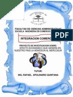Proyecto Final Mercosur Correcion