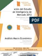 Informacion Copecoh -Ejecutivo 2013