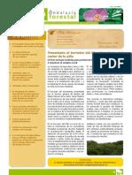 Andalucía Forestal nº 12