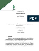 RELATÓRIO DE DETECÇÃO DE PROTEÍNAS DOS ALIMENTOS COM TESTE DO BIURETO