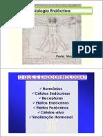 Aula Sistema Endócrino