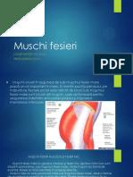Muschi Fesieri