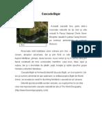 Atractii Naturale - Cascada Bigăr