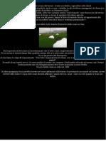 SANDS IN PILLOLE 2 BOLLE BIANCHE ENORMI COMPAIONO DAL TERRENO IN CINA.