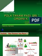 SRI Singkat