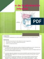 Medición de la eliminación intestinal