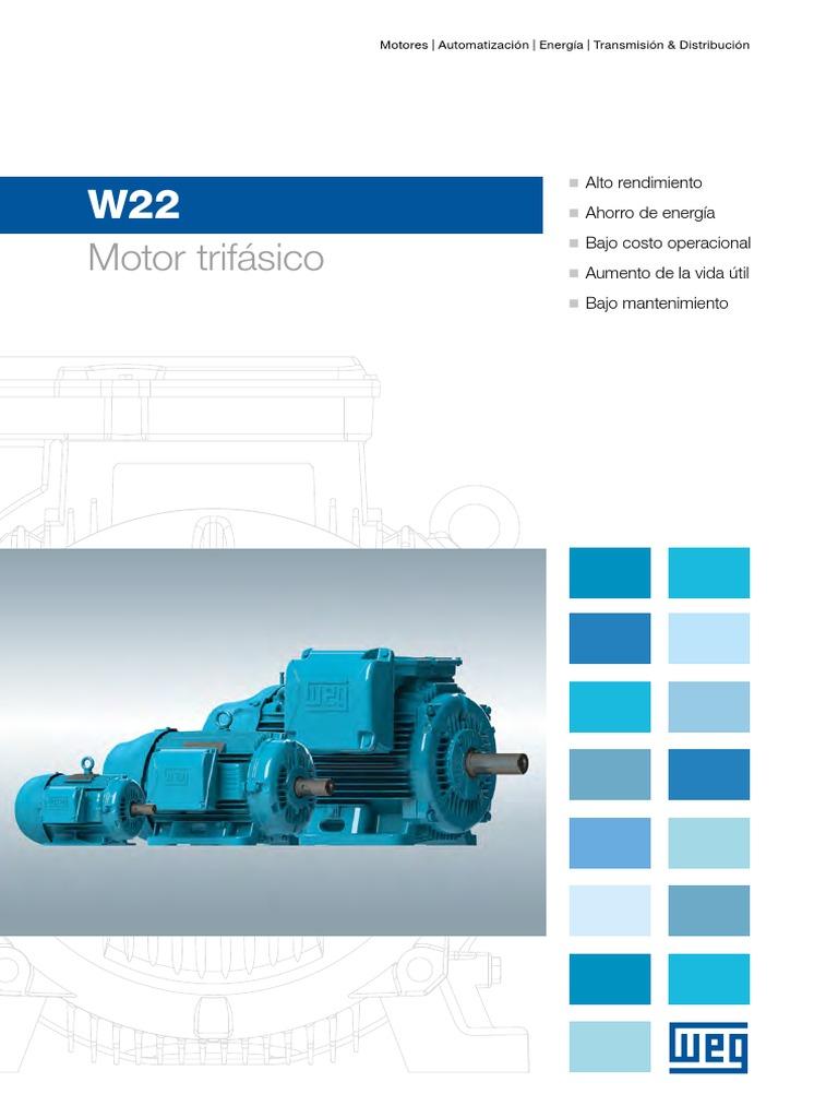 C WEG Motores