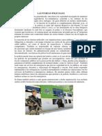 Las Fuerzas Policiales