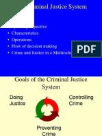 Goal of Criminal Justice System