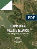 O Caminho Das Aguas Em Salvador