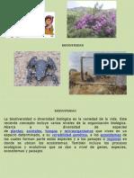 Ecosistemas Estrategias de Conservacion