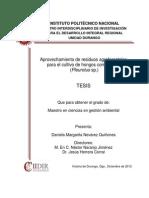 Tesis_Nevárez_Quiñones_Daniela.pdf