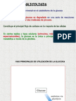 Glicólisis y Glucogenolisis.ppt