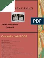 Marco teórico Práctica11