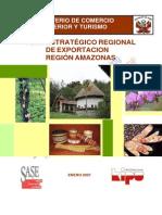Perx Amazonas