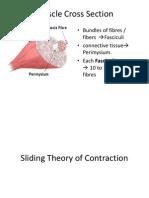 Sliding theory
