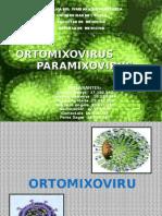 ortomixovirus-paramixovirus