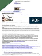 Mensajería y paquetería en México _ Mensajería y Paquetería