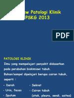 Review Pk Pskg 2013