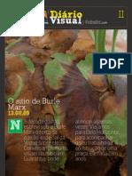 Diário Visual II - Burle Marx