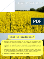 Biodiesel From Plant Oils