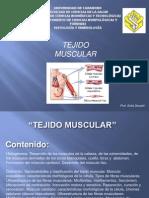 Clase Tejido Muscular-Sofia
