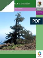 Manual de Genetica de La Conservacion