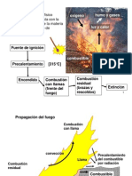 03 Principios Manejo Del Fuego