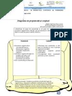 Diagrama de Prejudecati Si Confuzii.doc-1