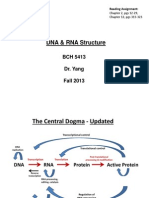 DNA RNA+Structure+Handout+VER++BCH5413++Fall+2013+II