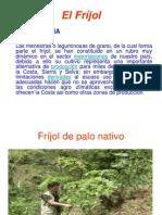 Frijol