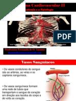 Sistema Cardiovascular II .(Anatomia e Fisiologia das artérias ) Unis - 2013