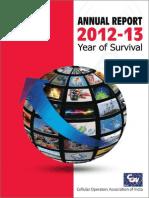 COAI Annual Report