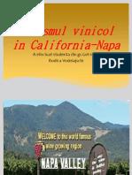 Turismul Vinicol in California-Napa