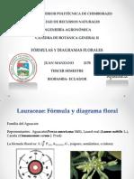 Fórmulas y diagramas florales
