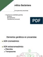 Genetica - Mutaciones- Tranferencia