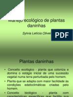 Aspectos Positivos Das Plantas Daninhas