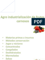 AGROINDUSTRIALIZACION FRUTAS