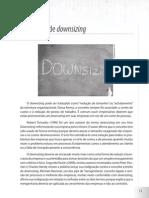 Downsizing e estratégias
