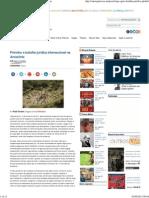 Petróleo e batalha jurídica internacional na Amazônia.pdf