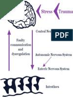 Stress Trauma Brain Gut Connection
