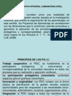 1.- Presentación PEIC.