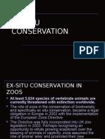 Ex Situ Conservation-tapir
