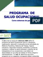 Programa de Salud Ocupacional2