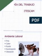 Ergonomia Del Trabajo ITESCAM