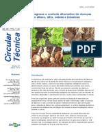 Embrapa Hortaliças. Circular Técnica, 120 - Diagnose e controle alternativo de doenças em alface, alho, cebola e brássicas