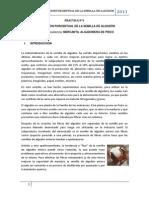 Composicion Porcentual de La Semilla de Algodon